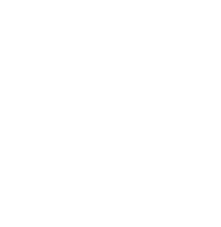 The Compliance Guru Pictogram